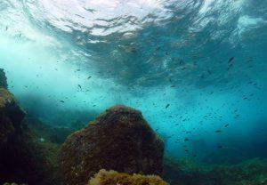 Paisaje sonoro submarino en el Mar de las Calmas